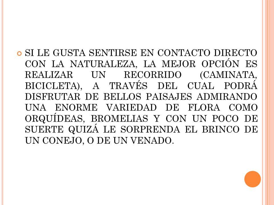 SI LE GUSTA SENTIRSE EN CONTACTO DIRECTO CON LA NATURALEZA, LA MEJOR OPCIÓN ES REALIZAR UN RECORRIDO (CAMINATA, BICICLETA), A TRAVÉS DEL CUAL PODRÁ DISFRUTAR DE BELLOS PAISAJES ADMIRANDO UNA ENORME VARIEDAD DE FLORA COMO ORQUÍDEAS, BROMELIAS Y CON UN POCO DE SUERTE QUIZÁ LE SORPRENDA EL BRINCO DE UN CONEJO, O DE UN VENADO.