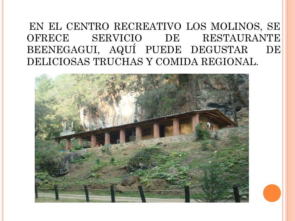 EN EL CENTRO RECREATIVO LOS MOLINOS, SE OFRECE SERVICIO DE RESTAURANTE BEENEGAGUI, AQUÍ PUEDE DEGUSTAR DE DELICIOSAS TRUCHAS Y COMIDA REGIONAL.