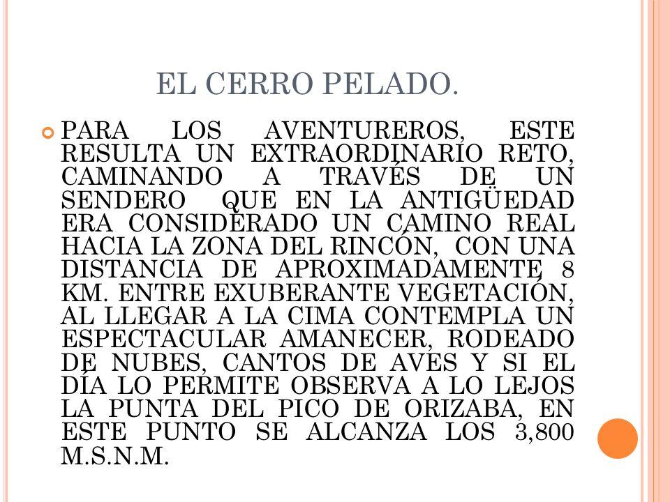 EL CERRO PELADO.