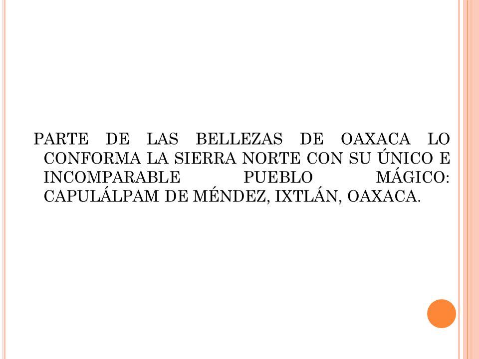 PARTE DE LAS BELLEZAS DE OAXACA LO CONFORMA LA SIERRA NORTE CON SU ÚNICO E INCOMPARABLE PUEBLO MÁGICO: CAPULÁLPAM DE MÉNDEZ, IXTLÁN, OAXACA.