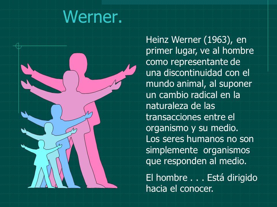 Werner. Heinz Werner (1963), en primer lugar, ve al hombre como representante de una discontinuidad con el mundo animal, al suponer un cambio radical