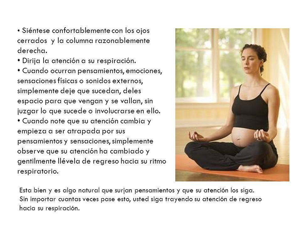 Siéntese confortablemente con los ojos cerrados y la columna razonablemente derecha. Dirija la atención a su respiración. Cuando ocurran pensamientos,