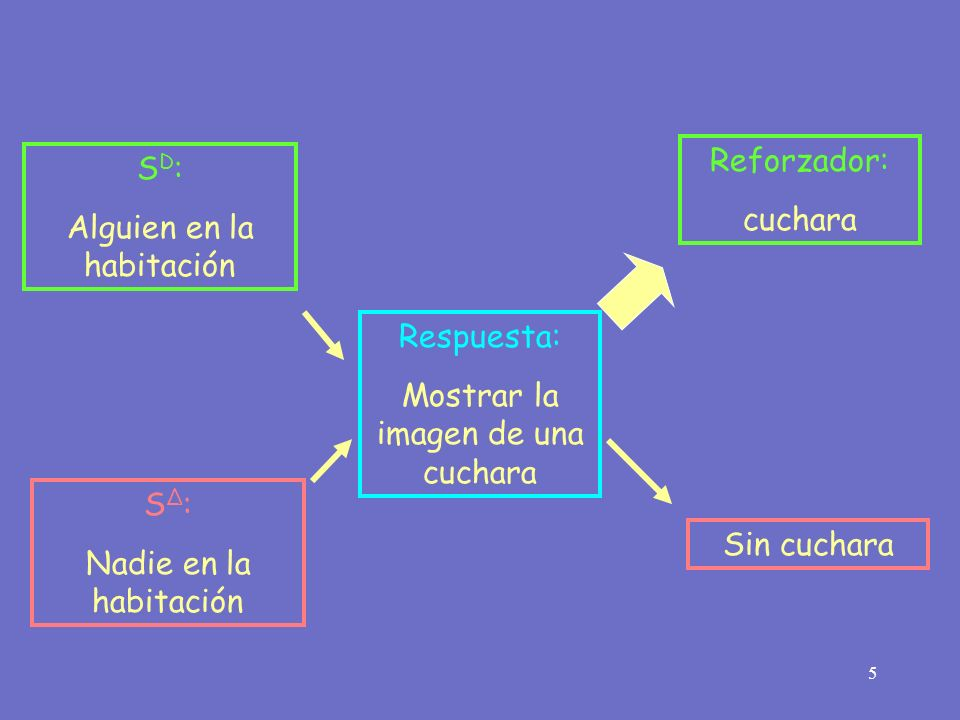 5 Respuesta: Mostrar la imagen de una cuchara Reforzador: cuchara S D : Alguien en la habitación S Δ : Nadie en la habitación Sin cuchara