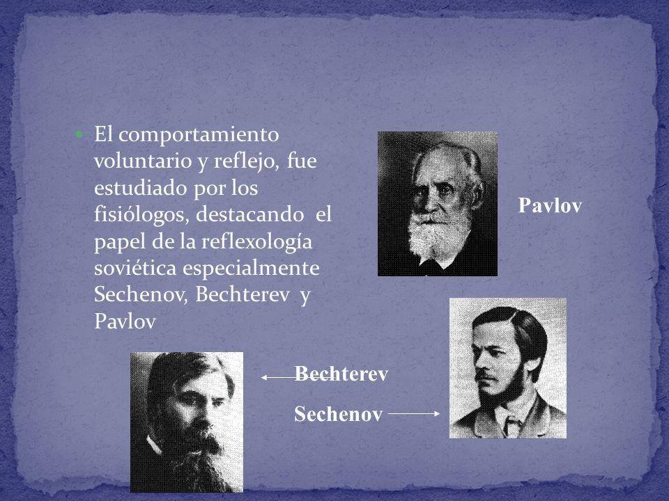 El comportamiento voluntario y reflejo, fue estudiado por los fisiólogos, destacando el papel de la reflexología soviética especialmente Sechenov, Bec