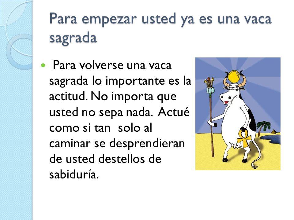 Para empezar usted ya es una vaca sagrada Para volverse una vaca sagrada lo importante es la actitud. No importa que usted no sepa nada. Actué como si