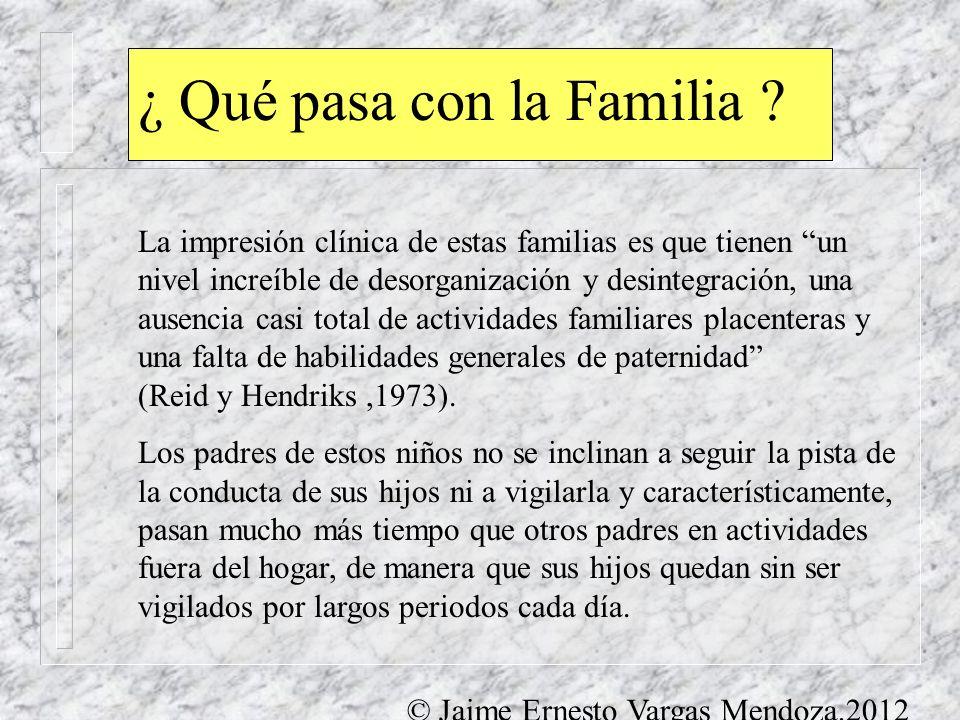 ¿ Qué pasa con la Familia ? La impresión clínica de estas familias es que tienen un nivel increíble de desorganización y desintegración, una ausencia