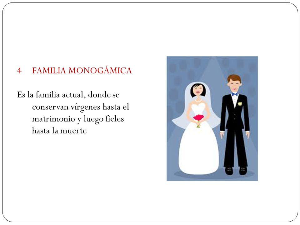 4FAMILIA MONOGÁMICA Es la familia actual, donde se conservan vírgenes hasta el matrimonio y luego fieles hasta la muerte