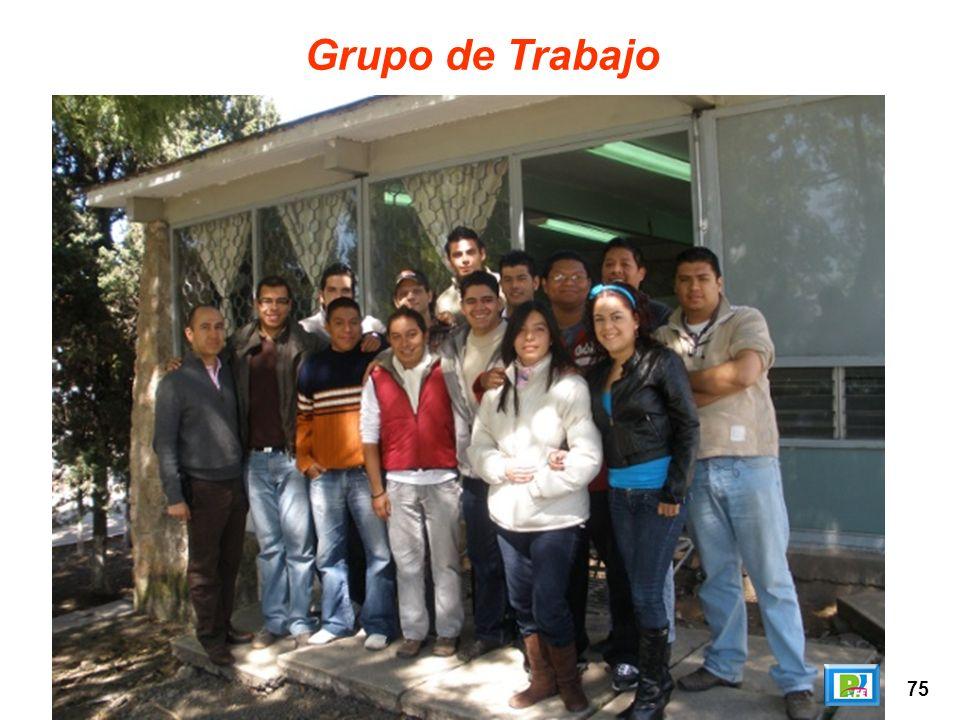 75 Grupo de Trabajo