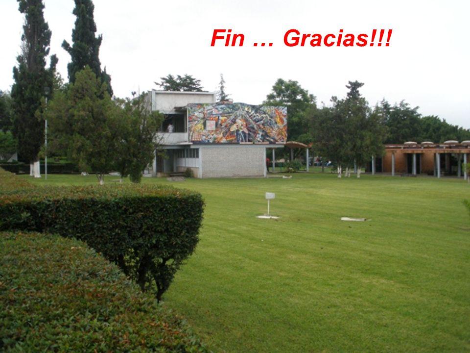 Fin … Gracias!!!