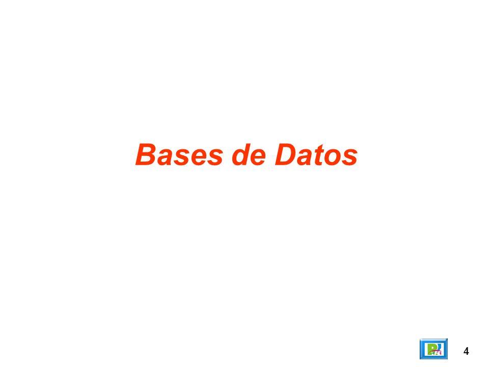4 Bases de Datos