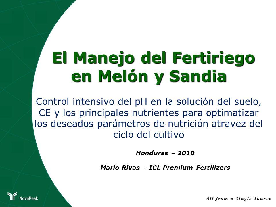 El Manejo del Fertiriego en Melón y Sandia El Manejo del Fertiriego en Melón y Sandia Control intensivo del pH en la solución del suelo, CE y los prin