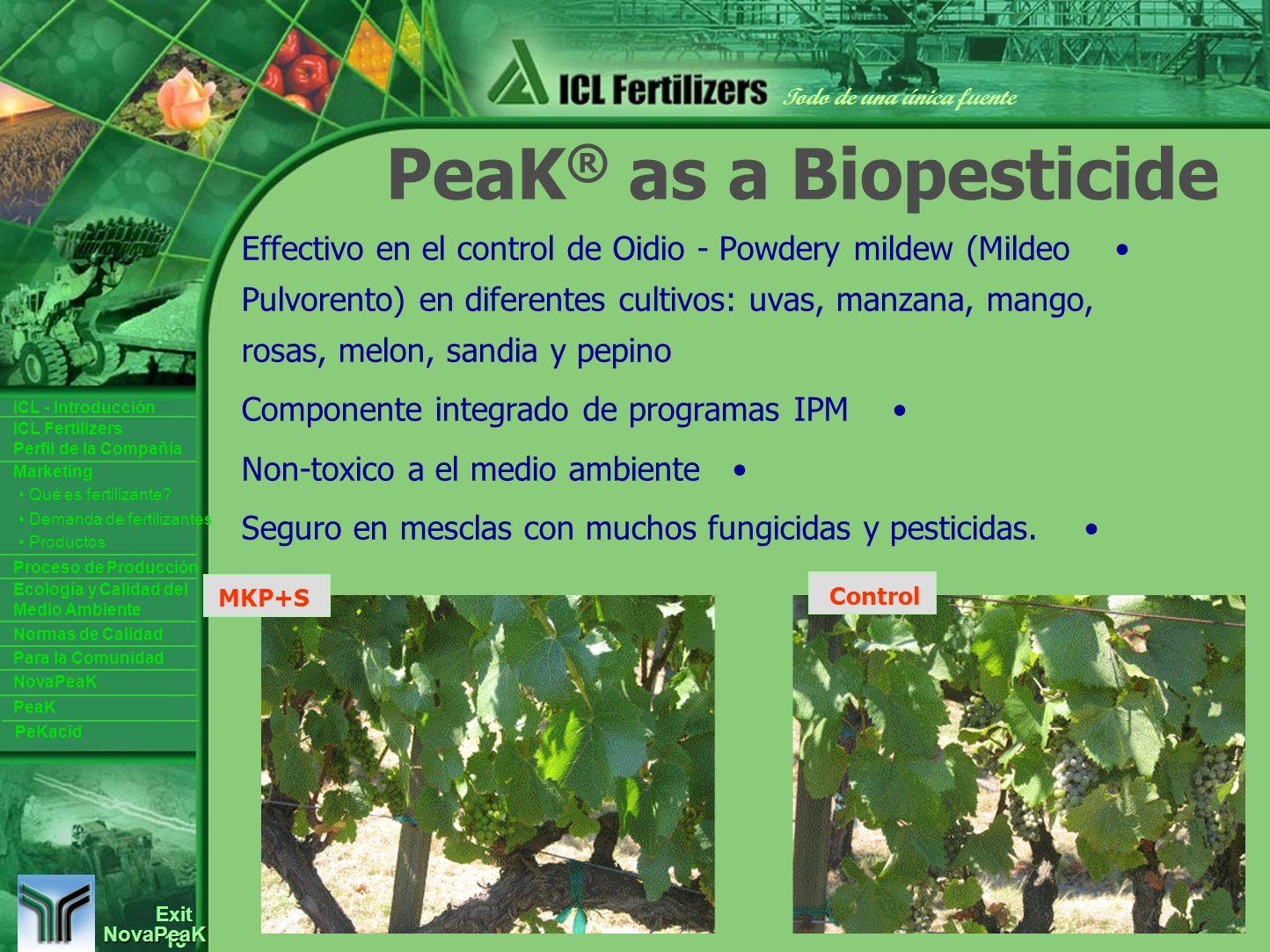 13 Exit Todo de una única fuente ICL Fertilizers Perfil de la Compañía ICL - Introducción Productos Para la Comunidad Ecología y Calidad del Medio Ambiente Normas de Calidad Marketing Proceso de Producción Demanda de fertilizantes Qué es fertilizante.