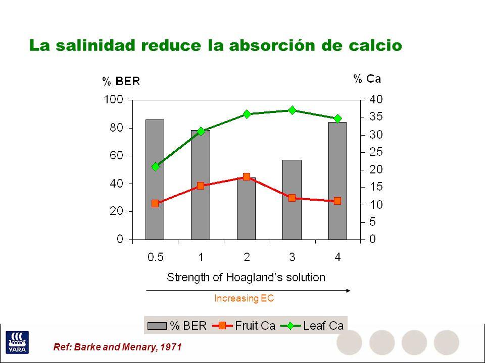 La salinidad reduce la absorción de calcio Increasing EC Ref: Barke and Menary, 1971