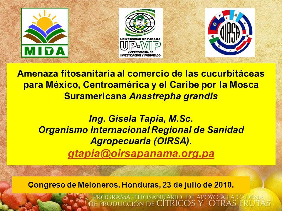 Amenaza fitosanitaria al comercio de las cucurbitáceas para México, Centroamérica y el Caribe por la Mosca Suramericana Anastrepha grandis Ing. Gisela