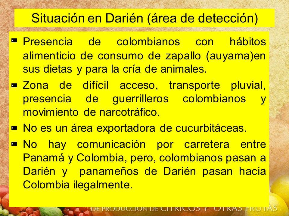 Situación en Darién (área de detección) Presencia de colombianos con hábitos alimenticio de consumo de zapallo (auyama)en sus dietas y para la cría de