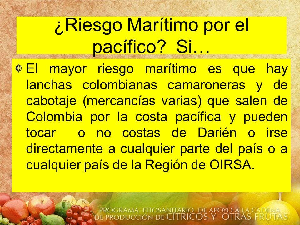 ¿Riesgo Marítimo por el pacífico? Si… El mayor riesgo marítimo es que hay lanchas colombianas camaroneras y de cabotaje (mercancías varias) que salen