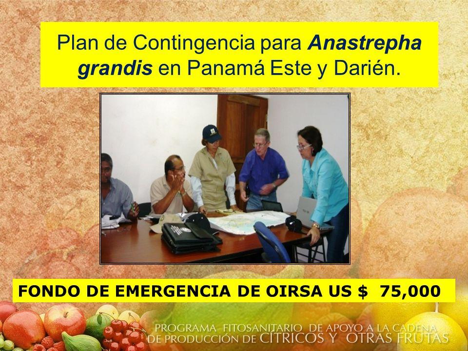 Plan de Contingencia para Anastrepha grandis en Panamá Este y Darién. FONDO DE EMERGENCIA DE OIRSA US $ 75,000
