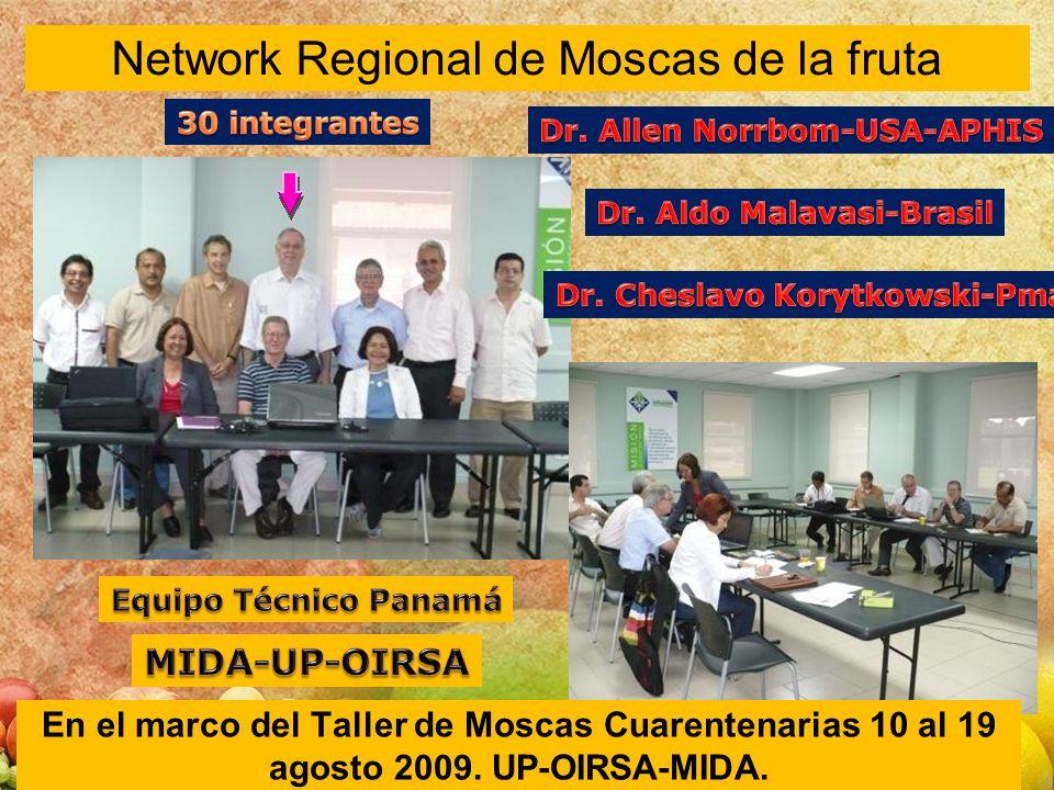 Network Regional de Moscas de la fruta En el marco del Taller de Moscas Cuarentenarias 10 al 19 agosto 2009. UP-OIRSA-MIDA.
