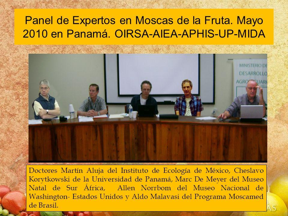 Panel de Expertos en Moscas de la Fruta. Mayo 2010 en Panamá. OIRSA-AIEA-APHIS-UP-MIDA Doctores Martín Aluja del Instituto de Ecología de México, Ches