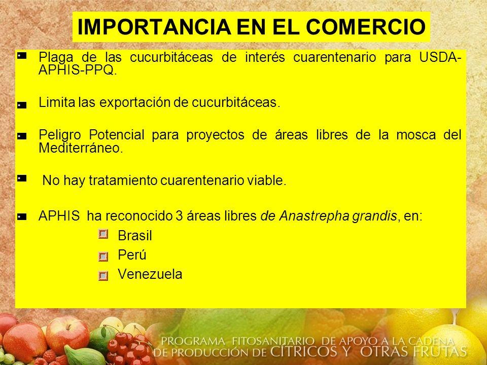 IMPORTANCIA EN EL COMERCIO Plaga de las cucurbitáceas de interés cuarentenario para USDA- APHIS-PPQ. Limita las exportación de cucurbitáceas. Peligro