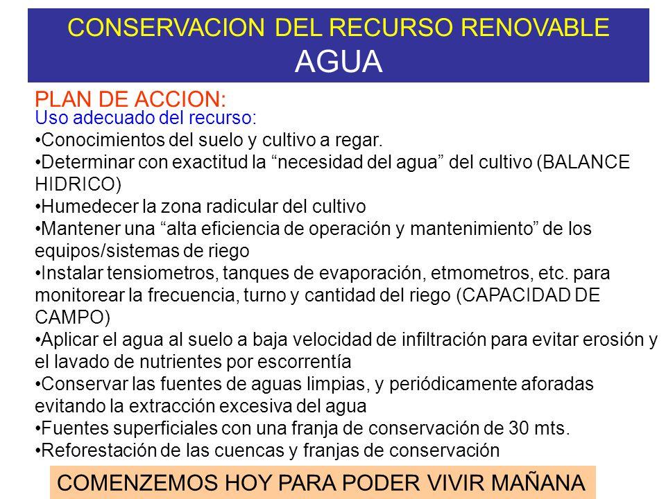 CONSERVACION DEL RECURSO RENOVABLE AGUA COMENZEMOS HOY PARA PODER VIVIR MAÑANA PLAN DE ACCION: Conservación y enriquecimiento del recurso: Reforestaci