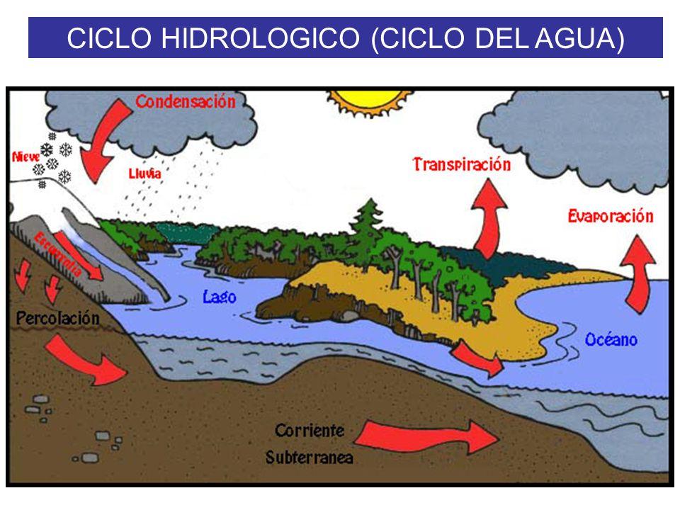 CICLO HIDROLOGICO (CICLO DEL AGUA) PROCESOS EVAPORACION: Conversión del AGUA (H 2 O) en vapor acuoso CONDENSACION: Conversión del vapor de agua en got