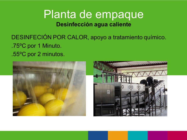 Planta de empaque Desinfección agua caliente DESINFECIÓN POR CALOR, apoyo a tratamiento químico..75ºC por 1 Minuto..55ºC por 2 minutos.