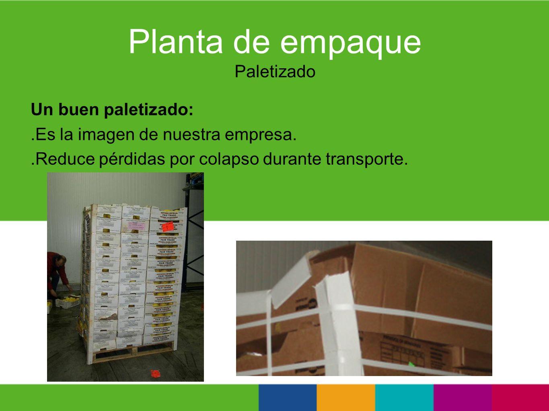 Planta de empaque Paletizado Un buen paletizado:.Es la imagen de nuestra empresa..Reduce pérdidas por colapso durante transporte.