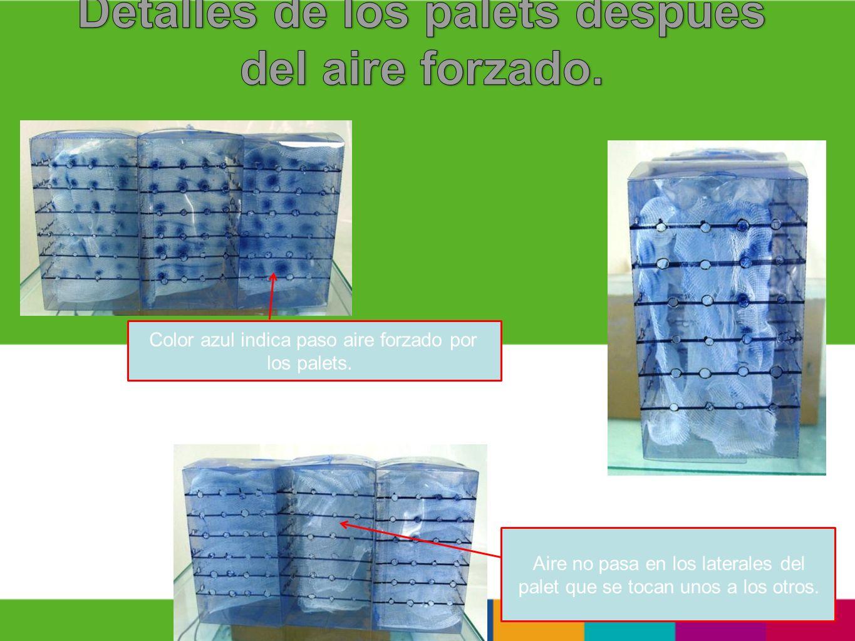 Color azul indica paso aire forzado por los palets. Aire no pasa en los laterales del palet que se tocan unos a los otros.