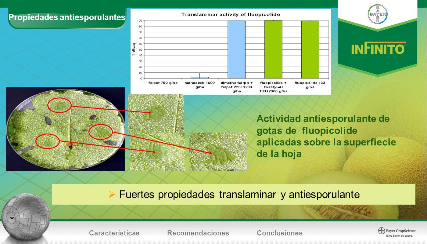 Propiedades antiesporulantes CaracterísticasRecomendacionesConclusiones Fuertes propiedades translaminar y antiesporulante Actividad antiesporulante d