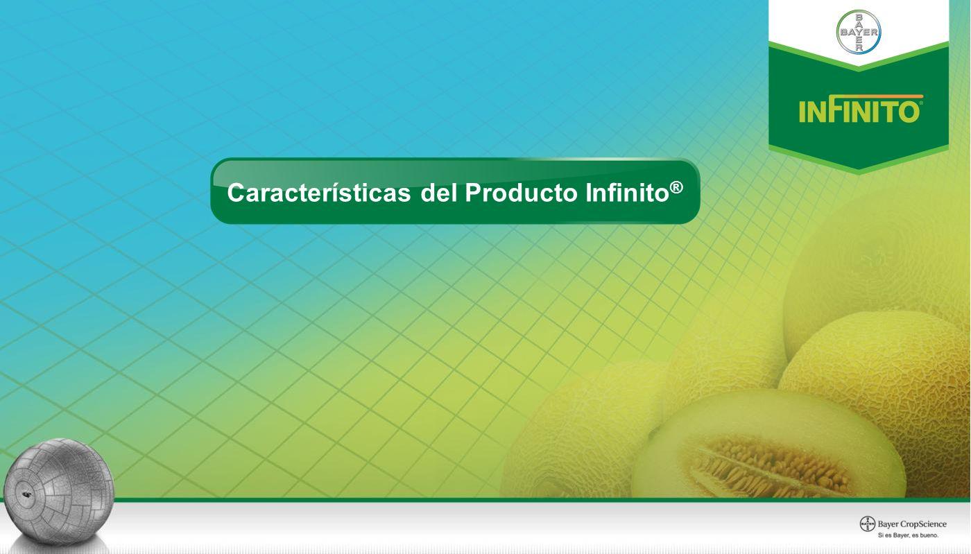 Características del Producto Infinito ®