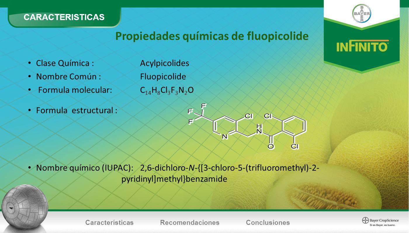 CARACTERISTICAS CaracterísticasRecomendacionesConclusiones Propiedades químicas de fluopicolide Clase Química : Acylpicolides Nombre Común : Fluopicol