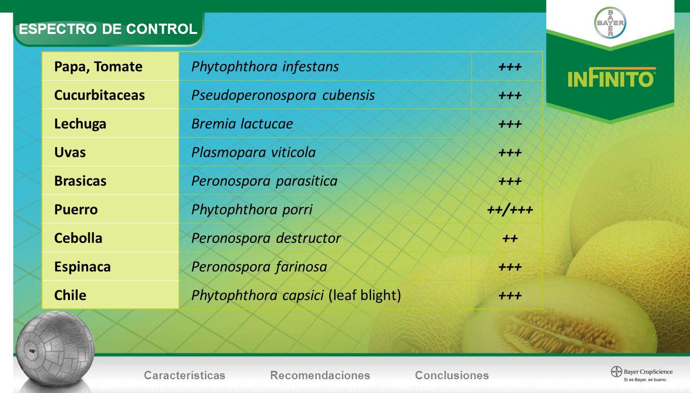 ESPECTRO DE CONTROL CaracterísticasRecomendacionesConclusiones Papa, TomatePhytophthora infestans+++ CucurbitaceasPseudoperonospora cubensis+++ Lechug