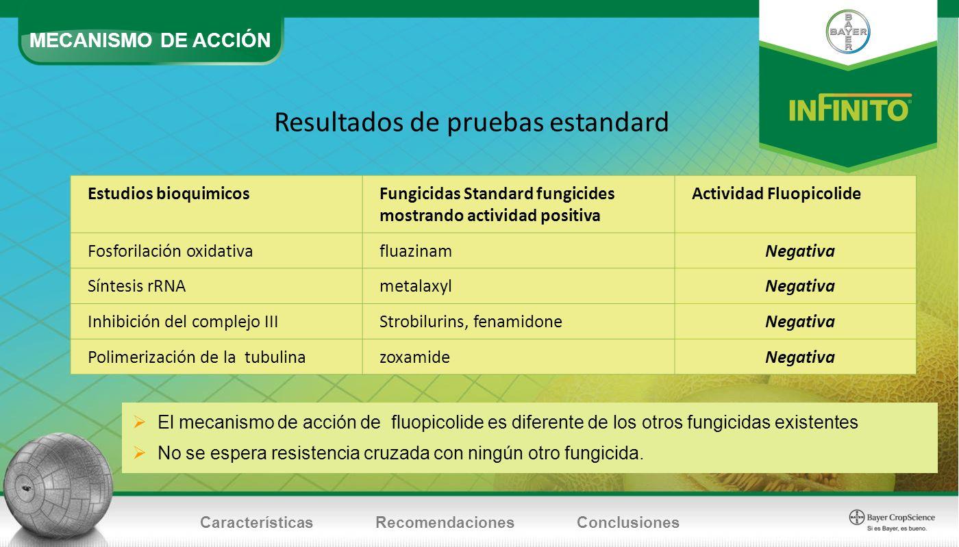 MECANISMO DE ACCIÓN CaracterísticasRecomendacionesConclusiones Resultados de pruebas estandard Estudios bioquimicosFungicidas Standard fungicides most
