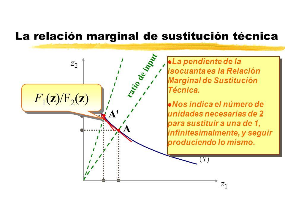 (Y) La relación marginal de sustitución técnica l La pendiente de la isocuanta es la Relación Marginal de Sustitución Técnica. l Nos indica el número