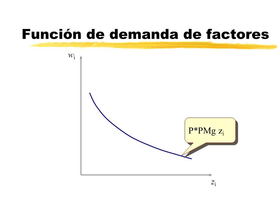 Función de demanda de factores zizi wiwi P*PMg z i