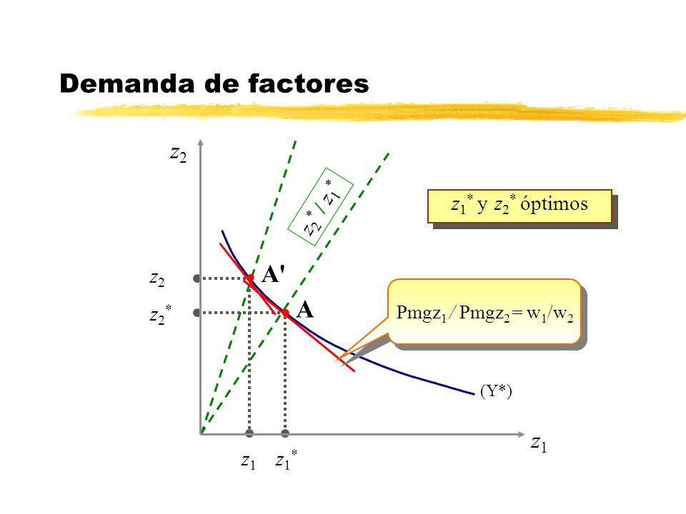 (Y*) z 1 * y z 2 * óptimos z1z1 z2z2 l A l A' Pmgz 1 / Pmgz 2 = w 1 /w 2 z 2 * / z 1 * z1*z1* z2*z2* Demanda de factores z1z1 z2z2