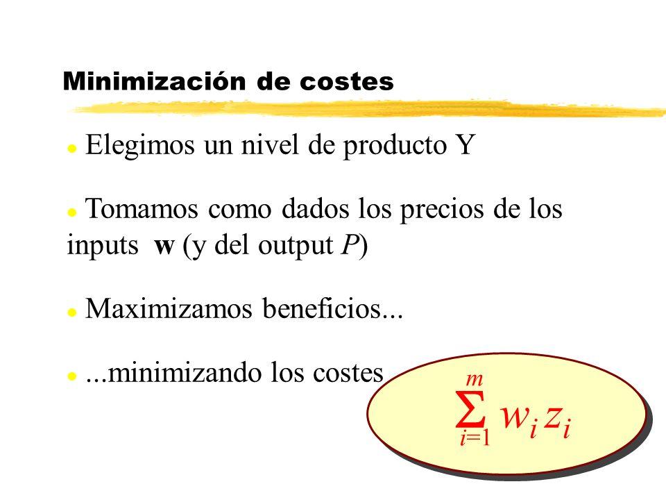 l Elegimos un nivel de producto Y l Tomamos como dados los precios de los inputs w (y del output P) l Maximizamos beneficios... l...minimizando los co