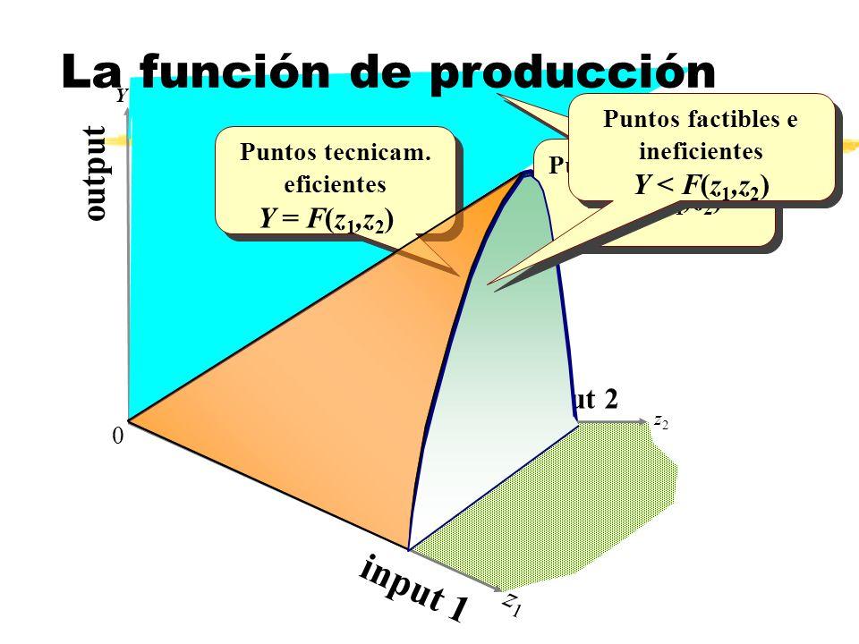 z2z2 Y z1z1 0 F(z, z ) 1 2 o u t p u t input 2 i n p u t 1 Puntos no factibles Y > F(z 1,z 2 ) Puntos no factibles Y > F(z 1,z 2 ) Puntos tecnicam. ef