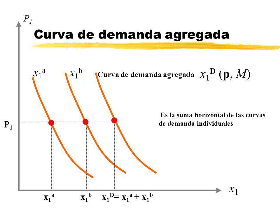 Curva de demanda agregada x1x1 P1P1 x1ax1a P1P1 l Es la suma horizontal de las curvas de demanda individuales x1bx1b l l x 1 D = x 1 a + x 1 b x 1 D (