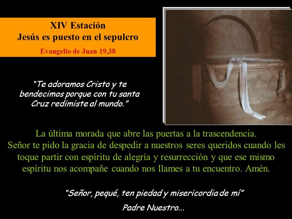 XIII Estación Jesús es bajado de la cruz Evangelio de Juan 19,30 Señor, pequé, ten piedad y misericordia de mí. Padre Nuestro... María sufre como Madr
