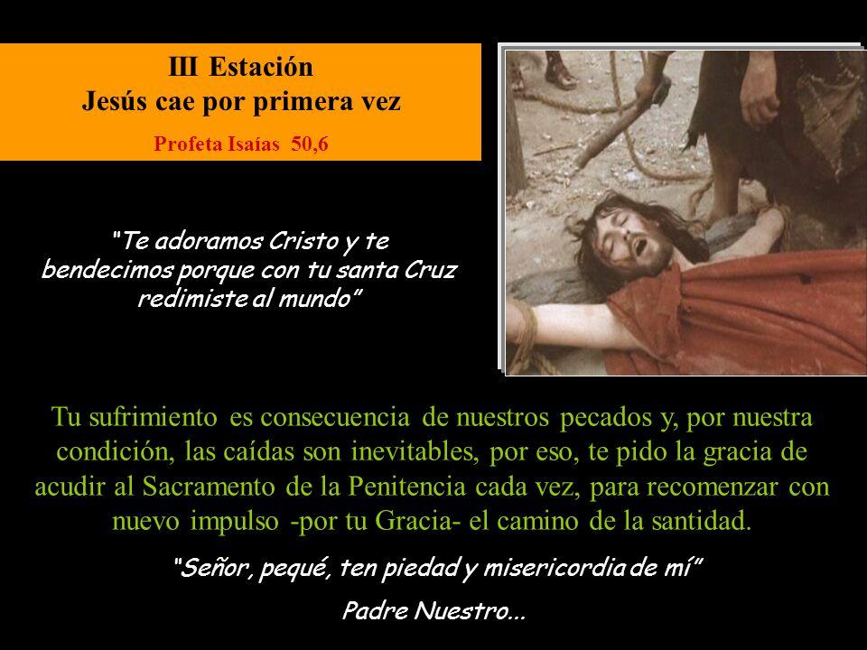 XIII Estación Jesús es bajado de la cruz Evangelio de Juan 19,30 Señor, pequé, ten piedad y misericordia de mí.