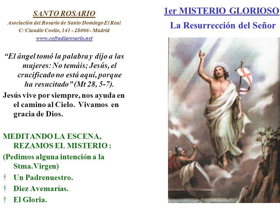 1er MISTERIO GLORIOSO La Resurrección del Señor SANTO ROSARIO Asociación del Rosario de Santo Domingo El Real C/ Claudio Coello, 141 - 28006 - Madrid