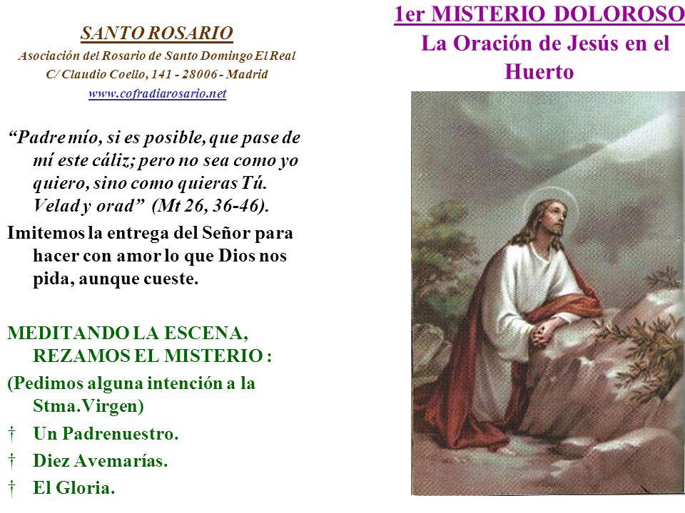 1er MISTERIO DOLOROSO La Oración de Jesús en el Huerto SANTO ROSARIO Asociación del Rosario de Santo Domingo El Real C/ Claudio Coello, 141 - 28006 -