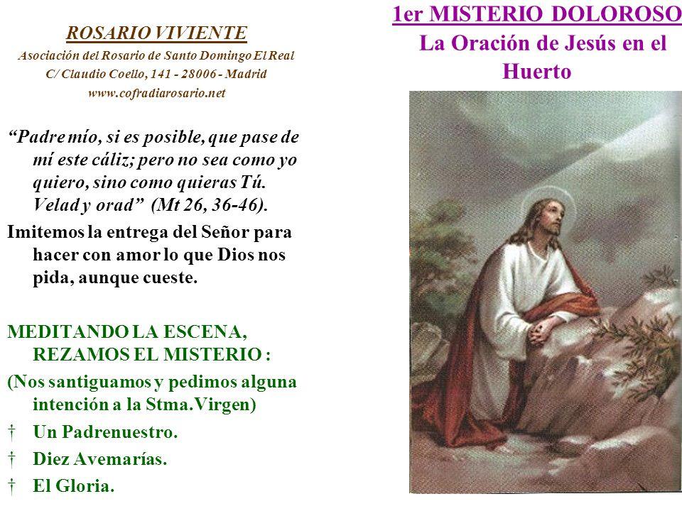 1er MISTERIO DOLOROSO La Oración de Jesús en el Huerto ROSARIO VIVIENTE Asociación del Rosario de Santo Domingo El Real C/ Claudio Coello, 141 - 28006