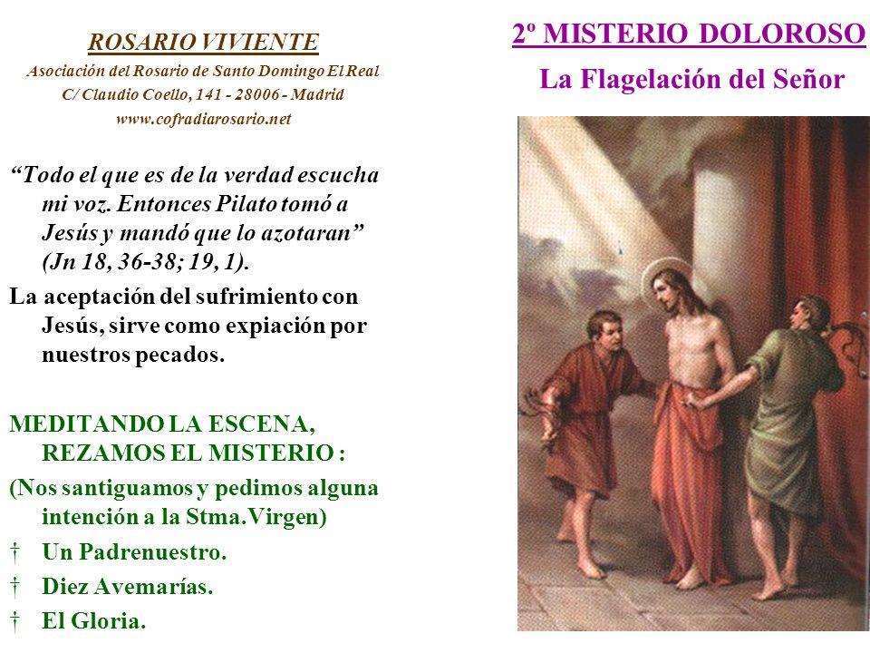 2º MISTERIO DOLOROSO La Flagelación del Señor ROSARIO VIVIENTE Asociación del Rosario de Santo Domingo El Real C/ Claudio Coello, 141 - 28006 - Madrid