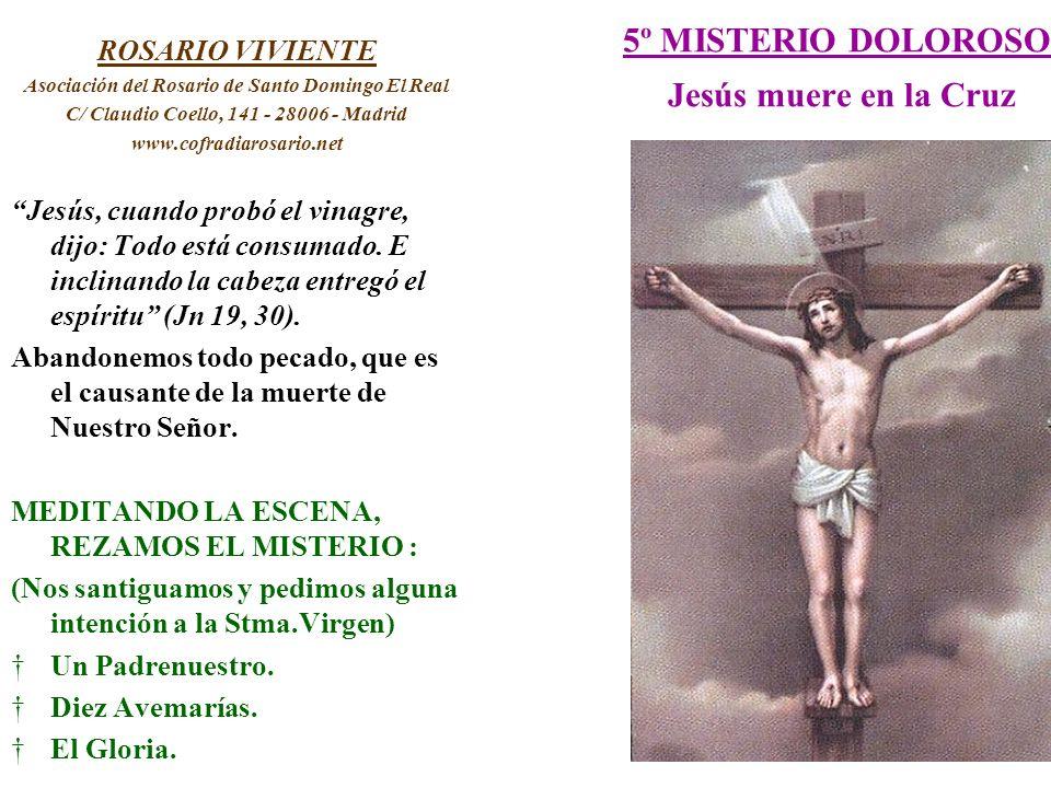 5º MISTERIO DOLOROSO Jesús muere en la Cruz ROSARIO VIVIENTE Asociación del Rosario de Santo Domingo El Real C/ Claudio Coello, 141 - 28006 - Madrid w
