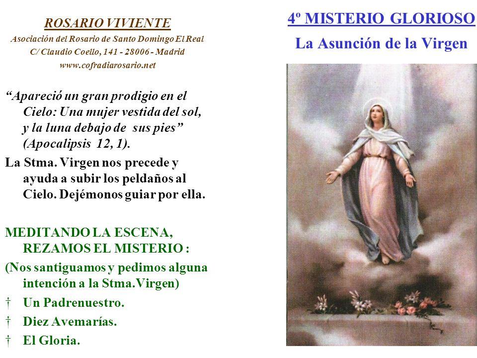 4º MISTERIO GLORIOSO La Asunción de la Virgen ROSARIO VIVIENTE Asociación del Rosario de Santo Domingo El Real C/ Claudio Coello, 141 - 28006 - Madrid