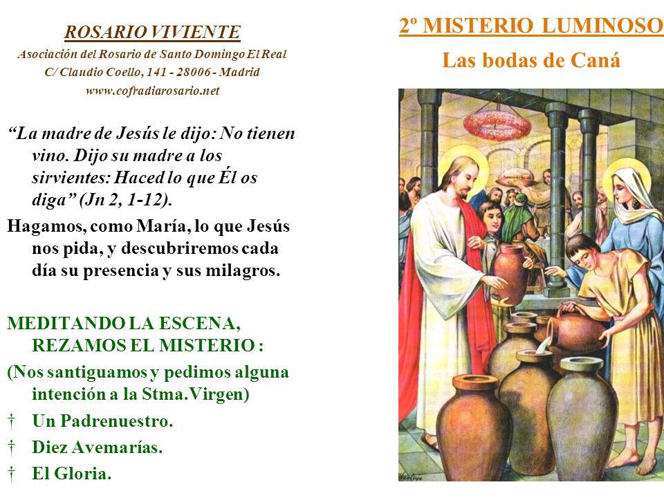 2º MISTERIO LUMINOSO Las bodas de Caná ROSARIO VIVIENTE Asociación del Rosario de Santo Domingo El Real C/ Claudio Coello, 141 - 28006 - Madrid www.co