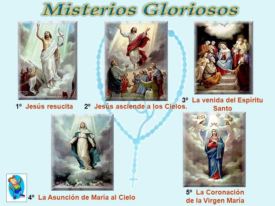 1º Jesús resucita2º Jesús asciende a los Cielos. 3º La venida del Espíritu Santo 5º La Coronación de la Virgen María 4º La Asunción de María al Cielo